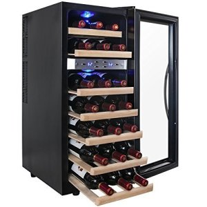AKDY 21 Bottle Dual Zone Thermoelectric Freestanding Wine Refrigerator