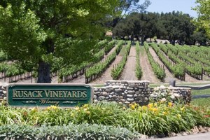 rusack vineyards image