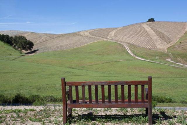 Adelaida Wine Trail