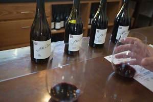 Alta Colina red wines