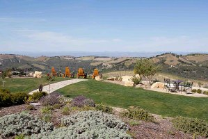 Daou winery and vineyards