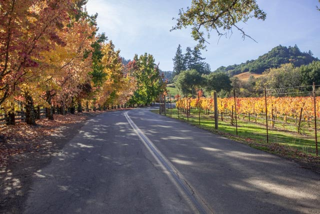 finding fall colors wine country west dry creek road