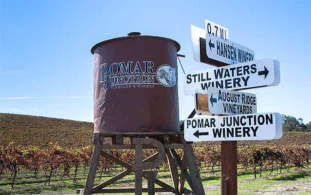 One of many Paso Robles wine country backroads