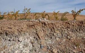 soil in Yakima valley