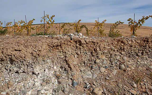 soil in Yakima valley wine country