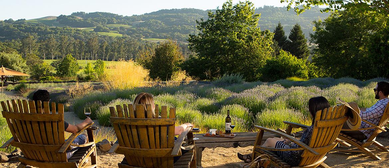 Oakvil;le wineries