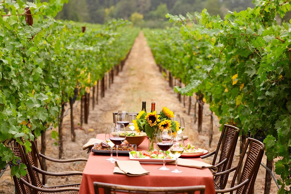 Sonoma wine, wine tours, Napa wine tours