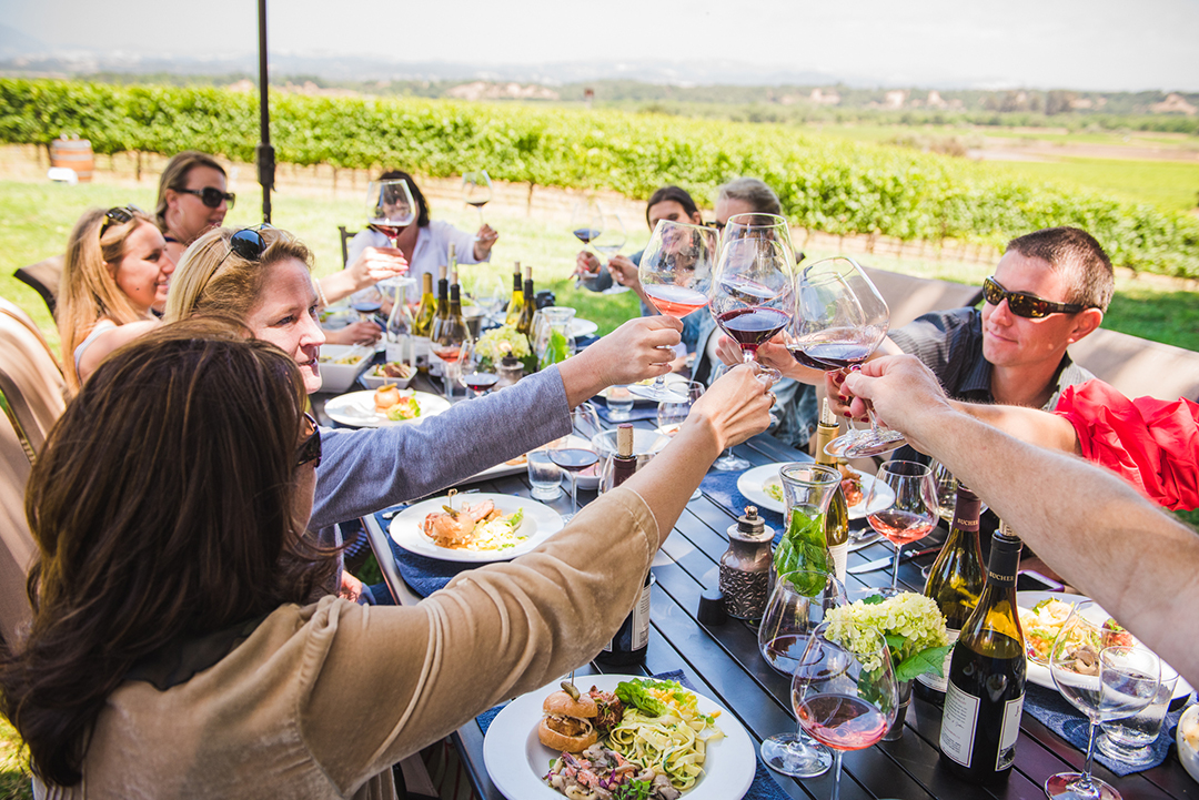 wine and food, sonoma county wine, wine tours in Sonoma
