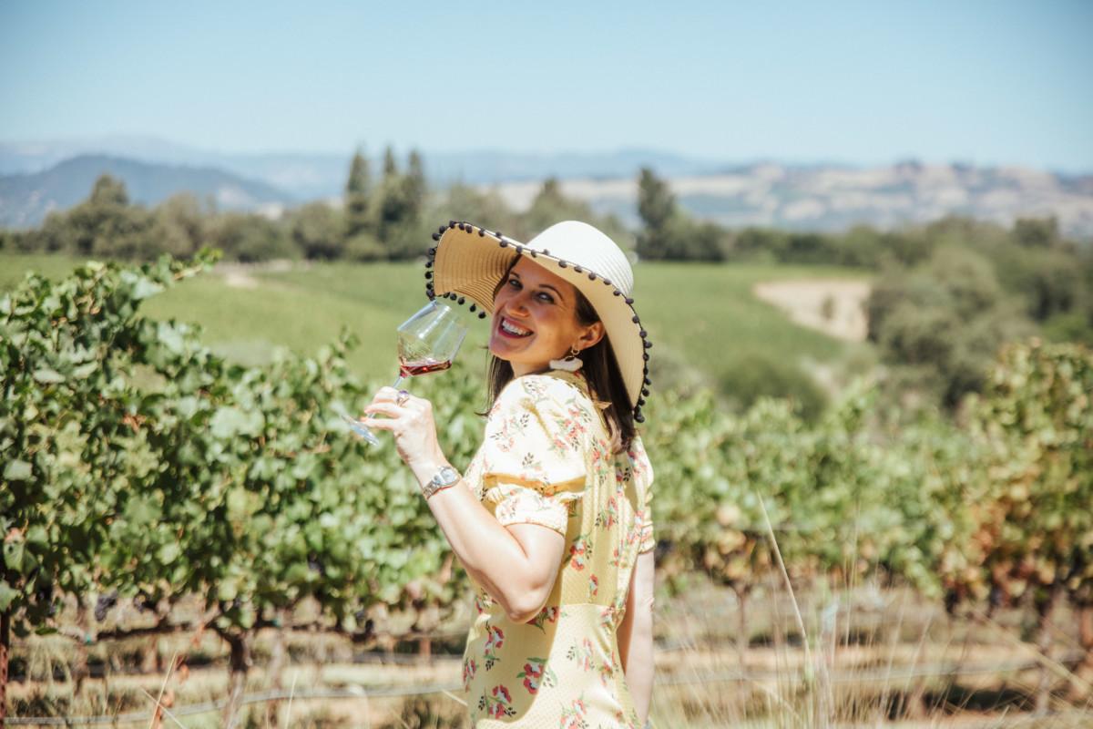 sonoma wineries, Sonoma wine Tours, napa Sonoma wine tours