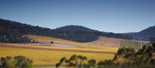 de-bortoli-yarra-valley-winery-estate-sign-on-hill feature