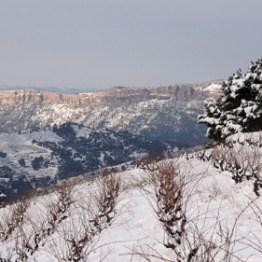 nieve figuera montsant tosses_r logo