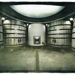 Vieux Telegraphe Cellars 600x414