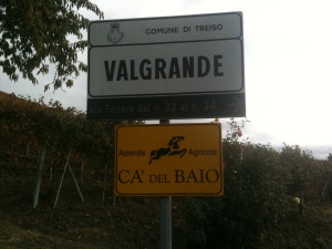 Valgrande vineyards