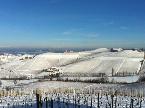 "The Nebbiolo vines in the Martinenga amphitheater sleeping under winter's warm ""duvet"" of snow."
