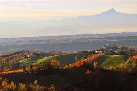 Breathtaking autumnal view of the Langhe's vineyards with Monte Viso standing guard to the west.  Photo Credit: Pierangelo Vacchetto