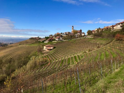 Treiso in Barbaresco