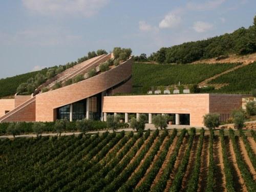 The new Maremma: Petra winery, Suvereto