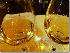 two shades of Sauvignon