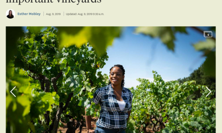 The San Francisco Chronicle's: Meet Brenae Royal, the young, black female farmer behind one of Sonoma's most important vineyards