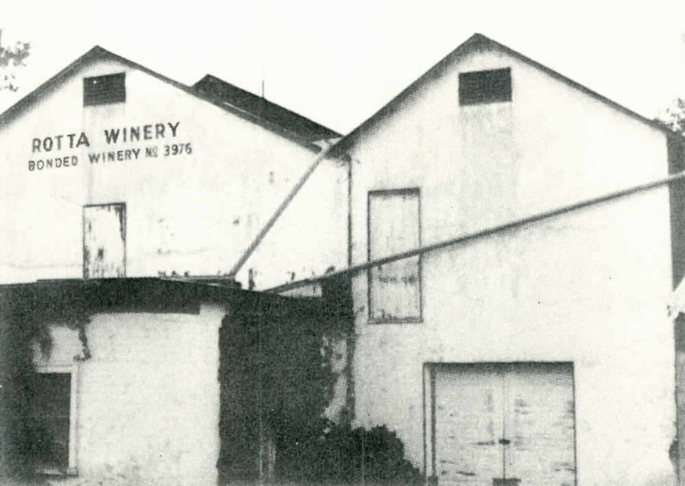 Rotta Winery in the 1940s