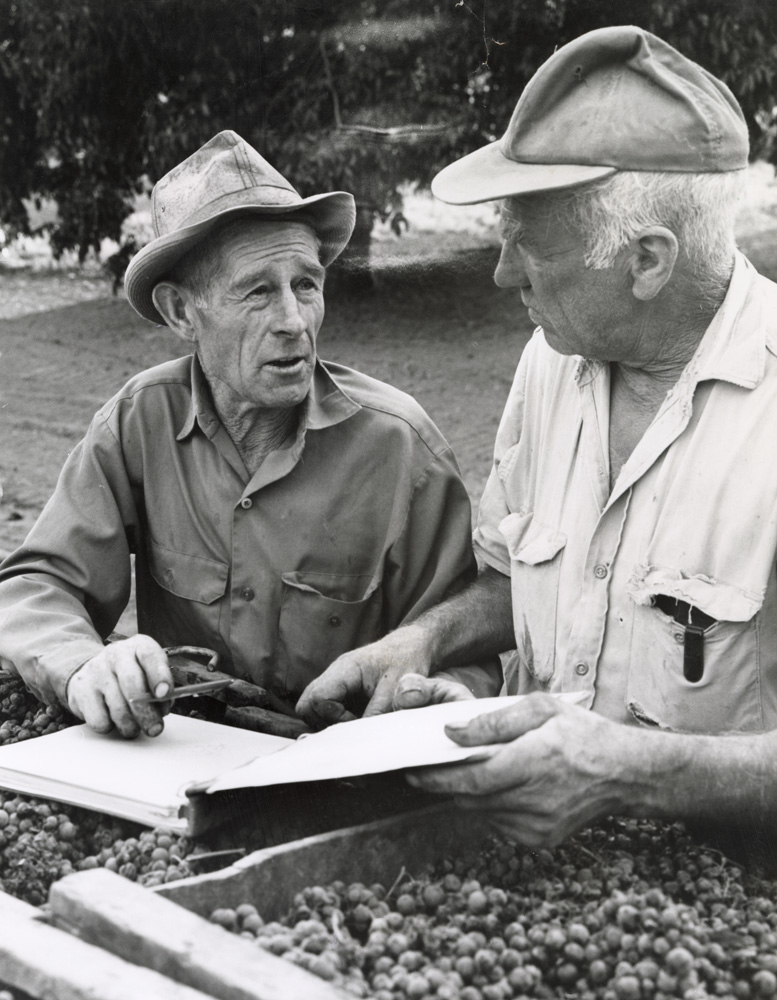 Mel Casteel and George Dellagamma. 1973.