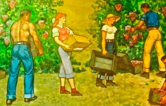 Lodi Tokay harvest From a 1960 mural by John Garth in Ole Mettler Pavilion