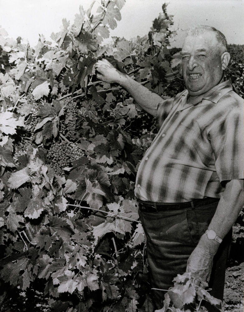 Frank Pesenti, the founder of the first winery that was bonded after Prohibition in 1934, Pesenti Winery. Courtesy of Frank Nerelli.