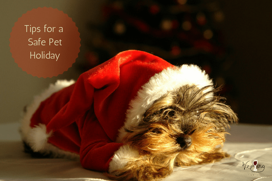 Tips for a Safe Pet Holida