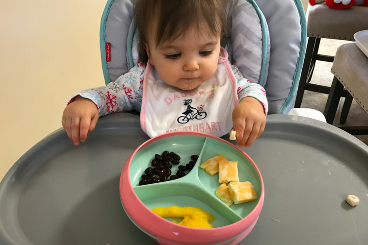 toddler meal-time suction plate