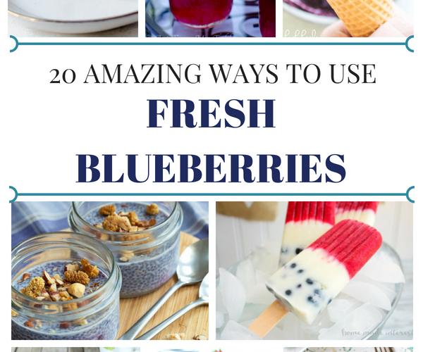 20 Amazing Fresh Blueberry Recipes