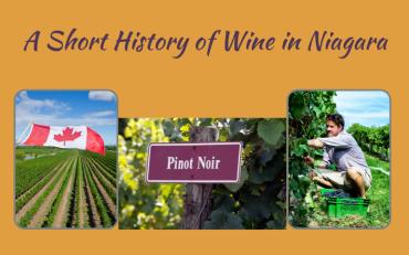A Short History of Wine in Niagara