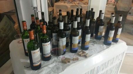 elvi-invita-and-herenza-reserva-at-elvi-miami-wine-tasting