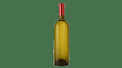 wine-cat_white.png?fit=390%2C220&ssl=1