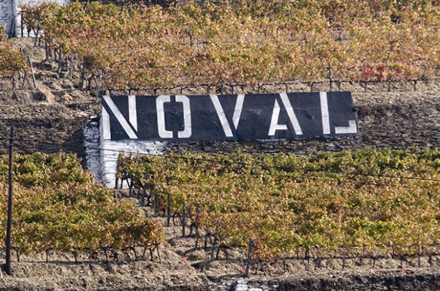Quinta do Noval joins list of 2015 Port declarations