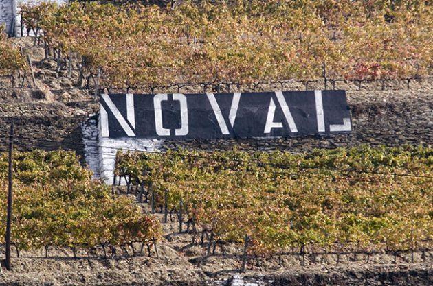Quinta do Noval joins list of 2015 Port declarations