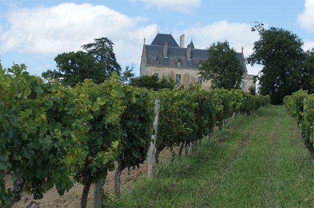 Château Fauchey in Cadillac Côtes de Bordeaux.