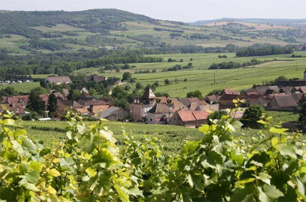 Louis Jadot buys historic Burgundy estate Prieur-Brunet