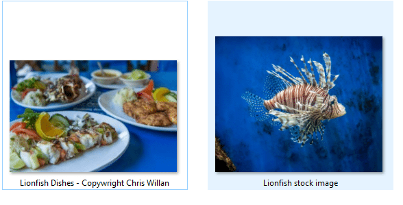 Saint Lucia wants tourists to eat Lionfish and save the reef