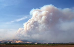 California Wine Country has not burned down