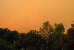 View from my house © Bob Ecker