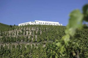 First taste: Chapoutier single vineyard wines 2017