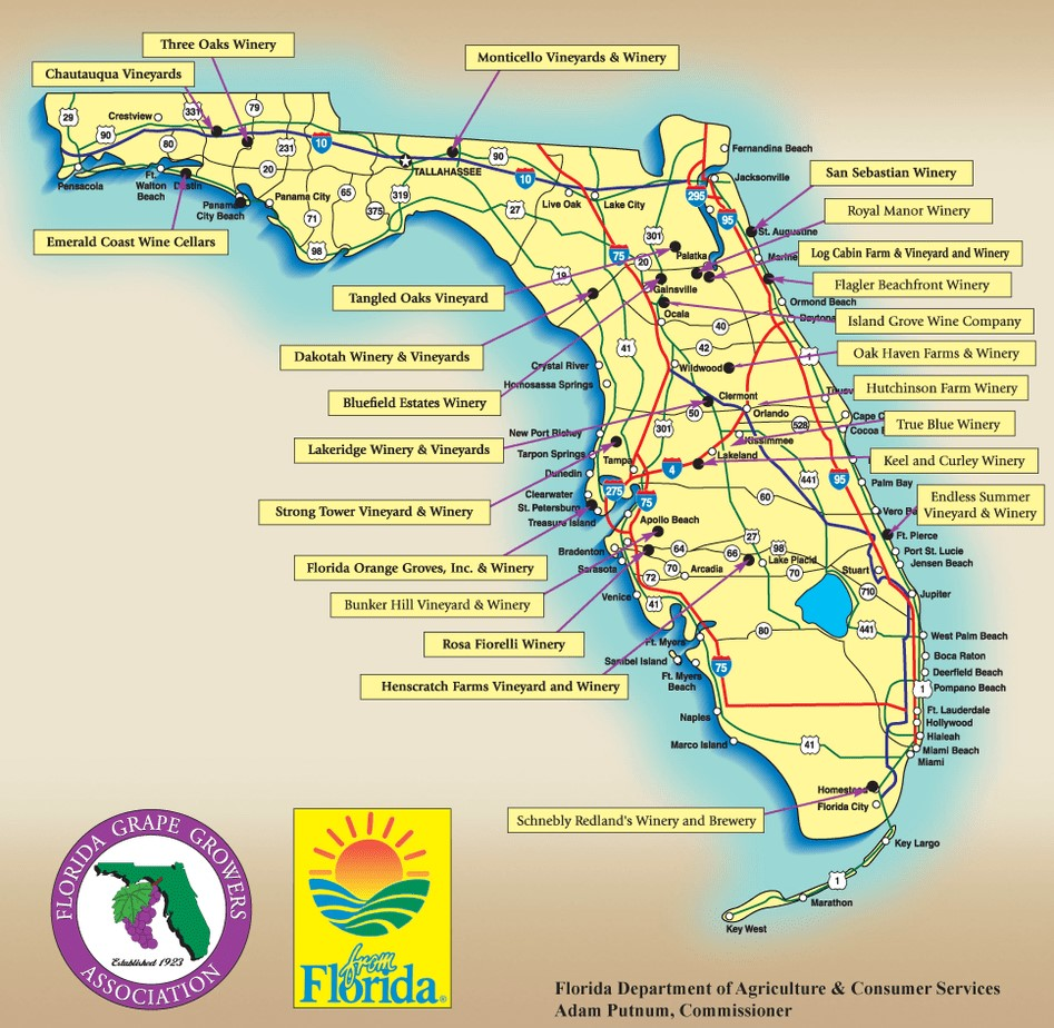 Wine your way to Florida