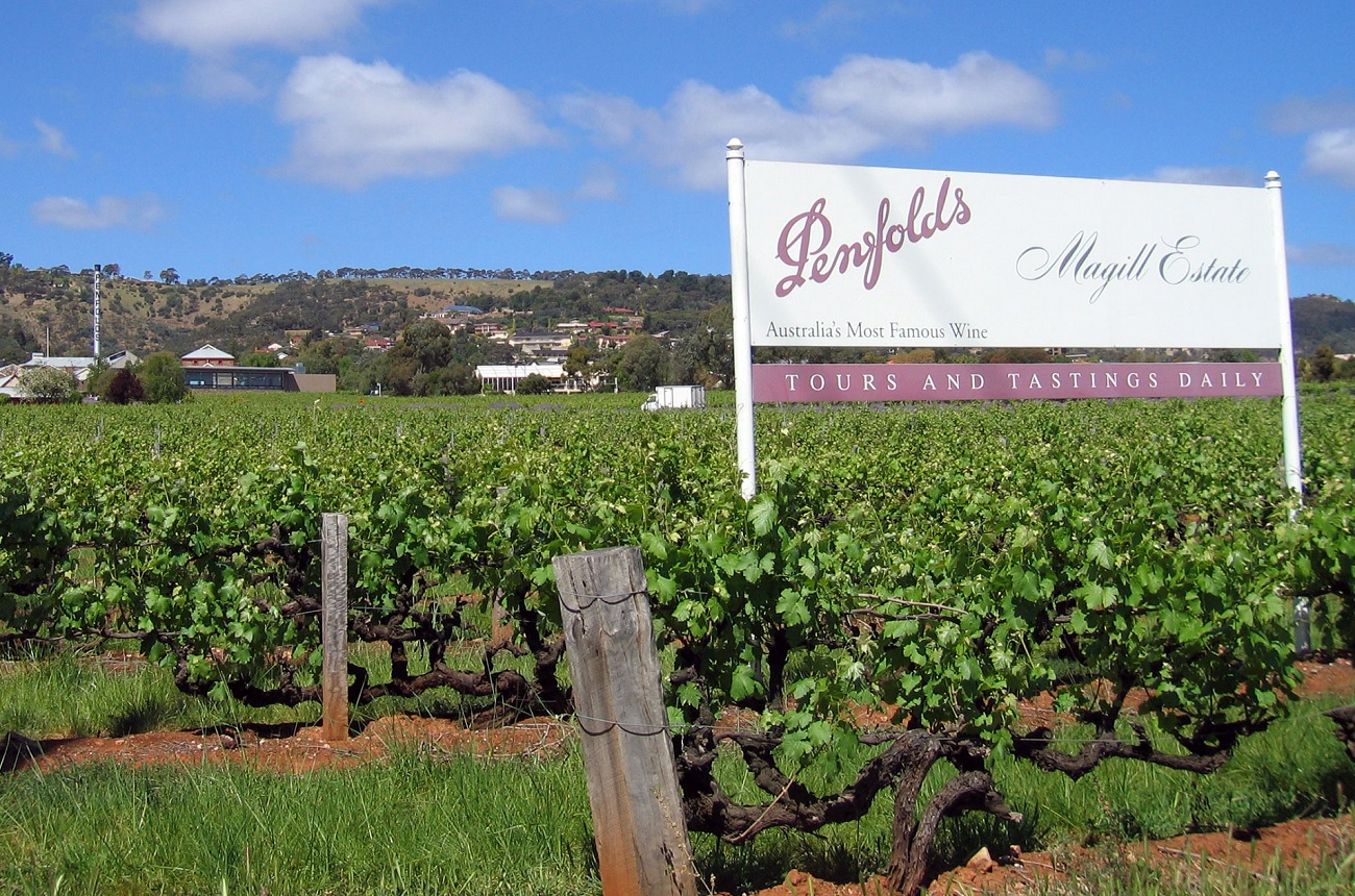 Penfolds owner Treasury rides China's fine wine wave