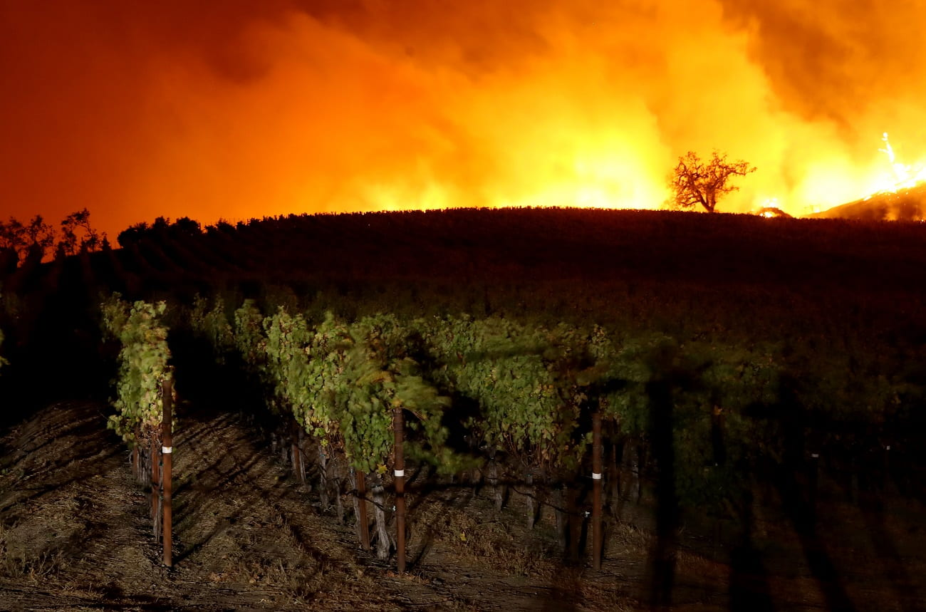 Wineries evacuated as wildfire hits northern Sonoma County