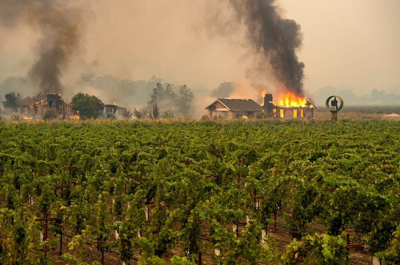 Sonoma wineries fight perceptions as well as wildfires