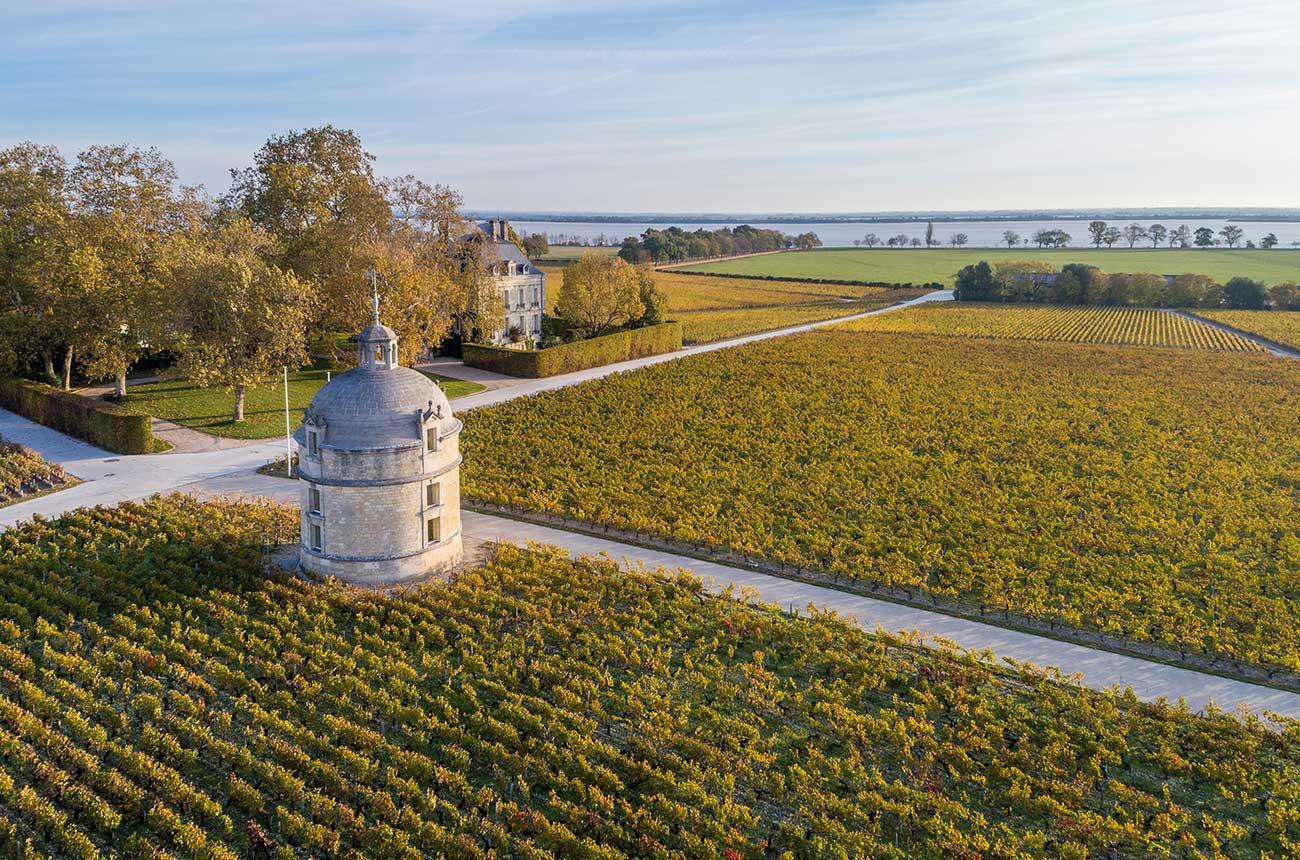 Top Bordeaux 2017 wines in the bottle: Left Bank report