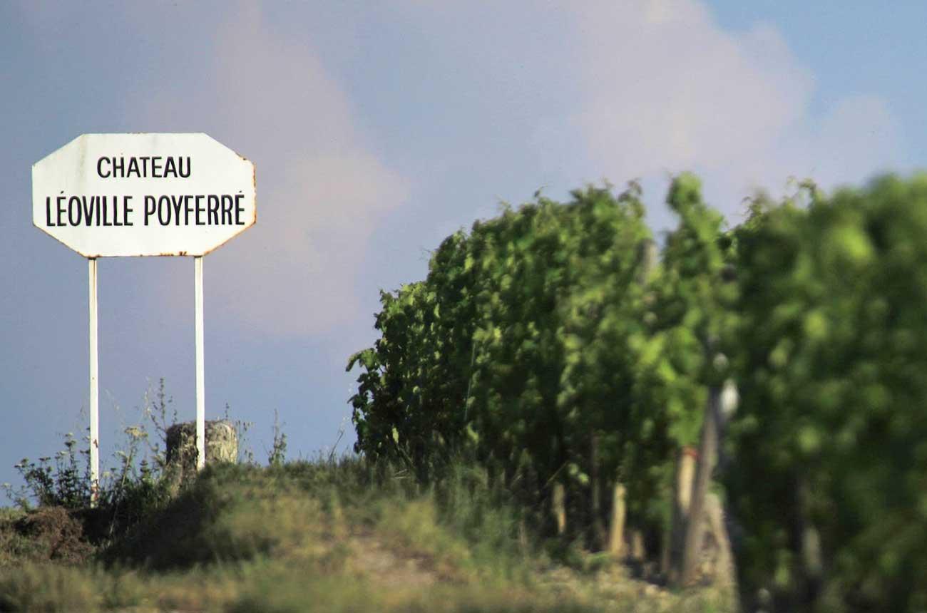 St-Julien 2017: Top wines re-tasted after bottling