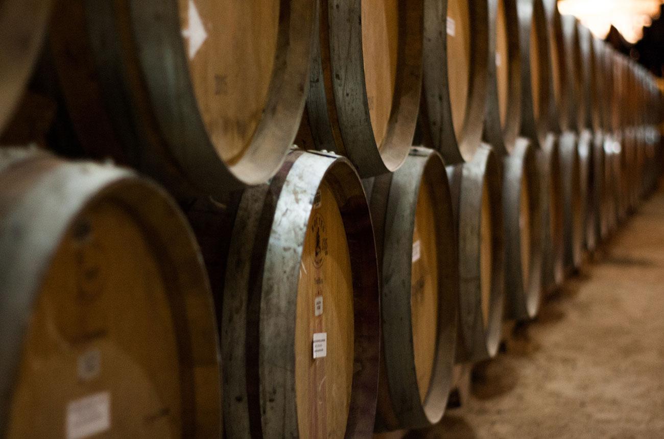 Italian police seize €70m of assets from Sicilian winery Feudo Arancio