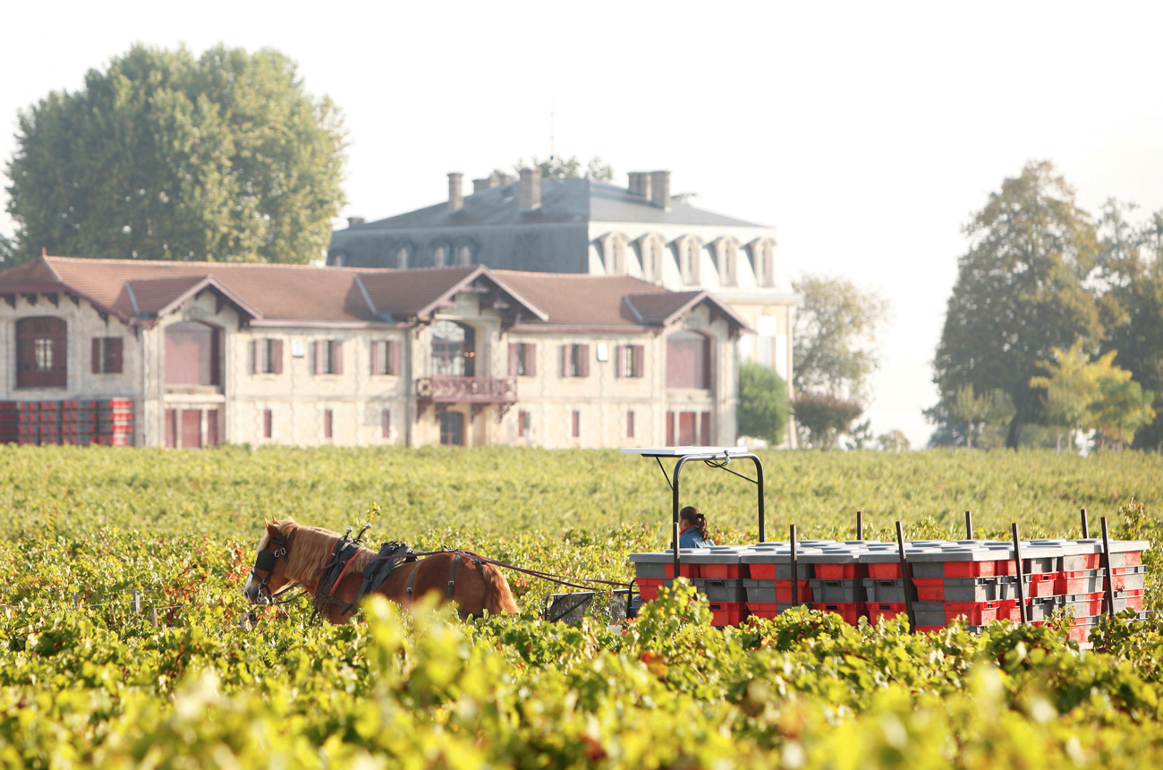 Pontet-Canet director Jean-Michel Comme to leave