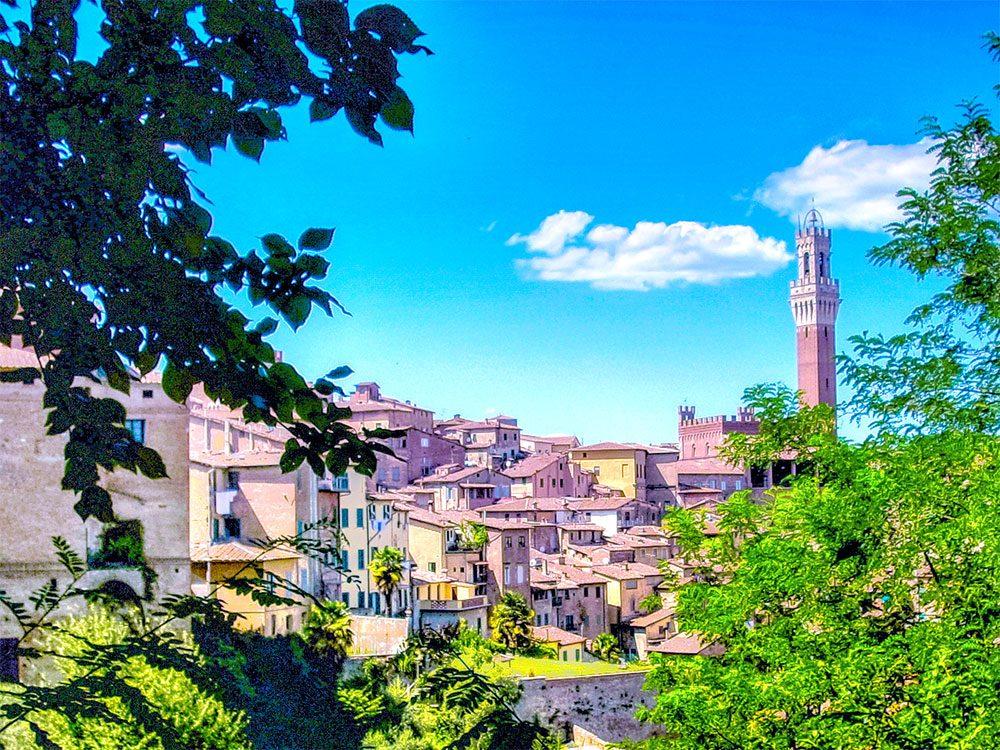 """La venticinquesima edizione di """"Cantine Aperte"""" in Toscana il prossimo 28 maggio"""